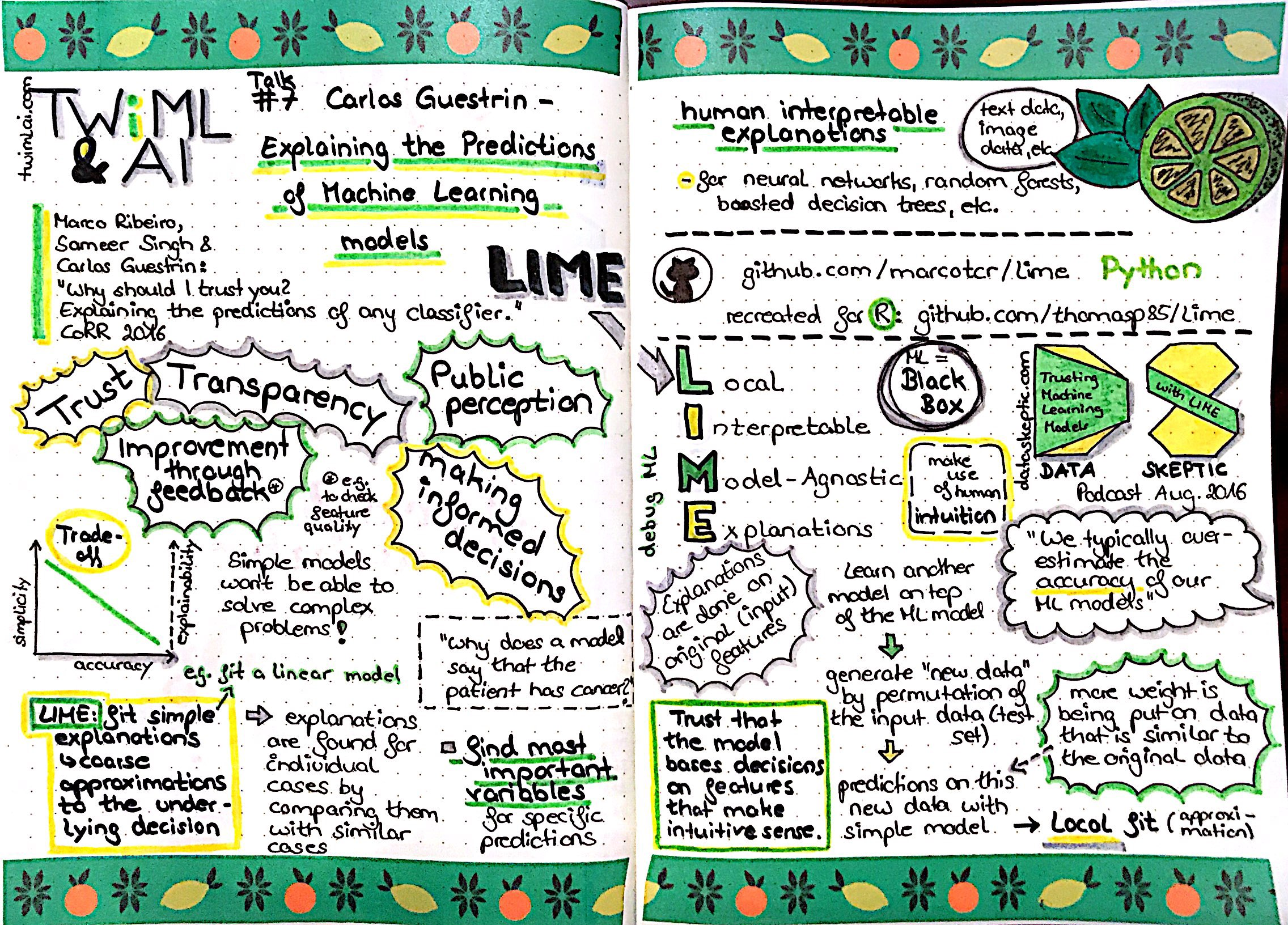 Sketchnotes: TWiML Talk #7 with Carlos Guestrin – Explaining the Predictions of Machine Learning Models & Data Skeptic Podcast - Trusting Machine Learning Models with Lime